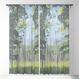 Wetlands in Full Swing from The Magic Glamp in Argyle Upstate New York Sheer Curtain