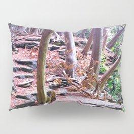 Woodland Rock Ledge Pillow Sham