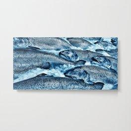 Market Fresh Salmon by Crow Creek Cool Metal Print