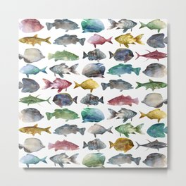 Suumer Color fishs Metal Print