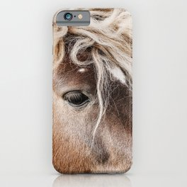 Pony With Curly Manes Photo | Horse Photography | Horse With Curled Hair iPhone Case