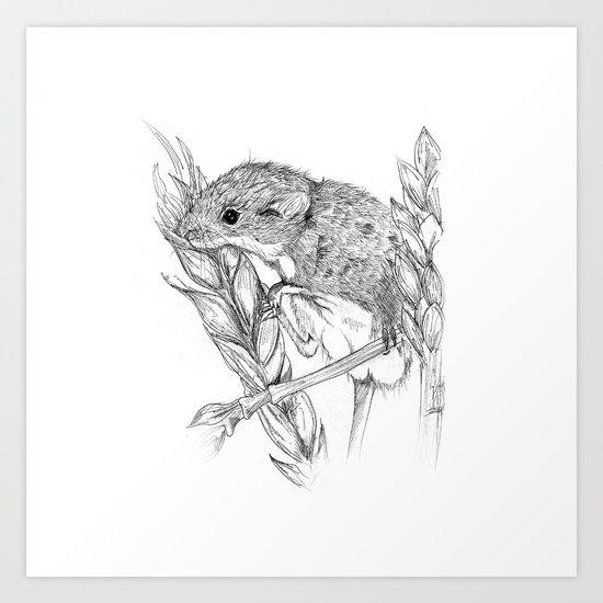 Harvest mouse Art Print