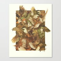 birds Canvas Prints featuring Red-Throated, Black-capped, Spotted, Barred by Teagan White