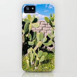 Cactus inside a corral iPhone Case