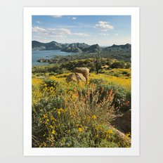 Arizona Spring Mountain Bloom Art Print
