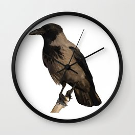 Hooded Crow Isolated Wall Clock