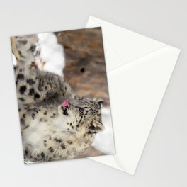 Snow Leopard Cub Stationery Cards