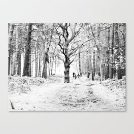 The tree in the clearing Canvas Print