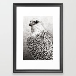 The Gyrfalcon Framed Art Print