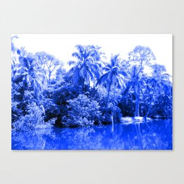 Florida in Blue Canvas Print