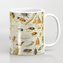 Insects Vintage Scientific Illustration French Language Encyclopedia Lithographs Educational Coffee Mug