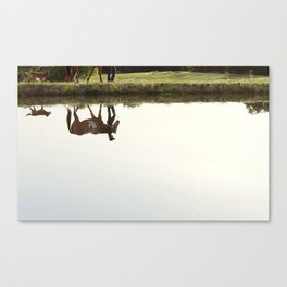 Follow Her Anywhere Canvas Print