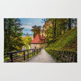 Cesky Krumlov Path Rug