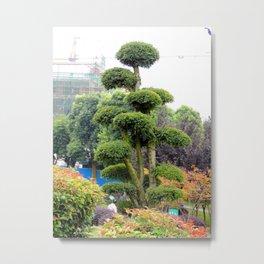 Yueyang garden | Jardin Yueyang Metal Print