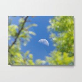 Framed Spring Moon Metal Print
