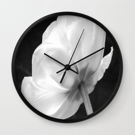 Close-up of white tulip in black background Wall Clock