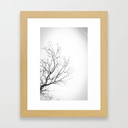 Lonely Tree 2 Framed Art Print
