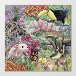 Flora and Fauna of Mexico Canvas Print