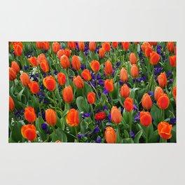 Tulip Field 2 Rug