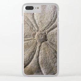 Sand dollar Clear iPhone Case