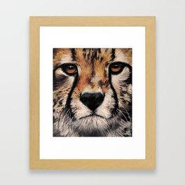 Cheetah, Savannah Hunter Framed Art Print