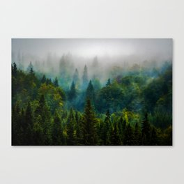 forest redone Canvas Print