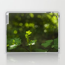 Green leaf and summer light bokeh Laptop & iPad Skin