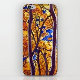 Autumn Birch iPhone Skin