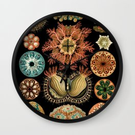 Sea Life Illustrations by Ernst Haeckel, 1904 Wall Clock