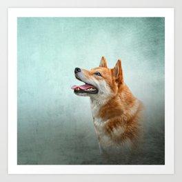 Drawing Japanese Shiba Inu dog 2 Art Print