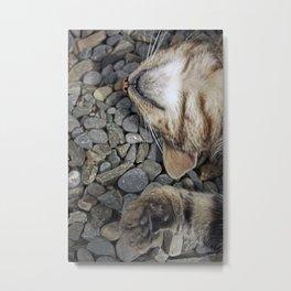 Ecstatic cat Metal Print