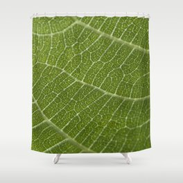 Fig tree leaf Shower Curtain