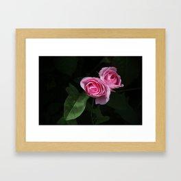 Pink and Dark Green Roses on Black Framed Art Print