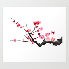 red plum flower Art Print