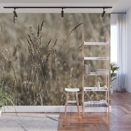 Wild meadow grass in winter Wall Mural