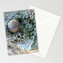Nacre rock with sea snail Stationery Cards