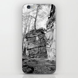 Perched Atop iPhone Skin