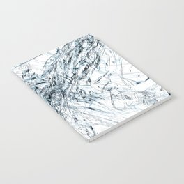Cell012 Notebook