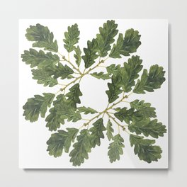 Oak leaf ensemble Metal Print