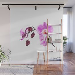 pink orchid flower watercolor painting Wall Mural