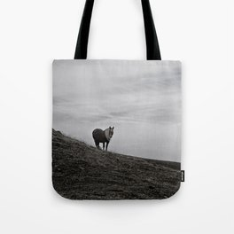 A Pony in the Pyrenees Tote Bag