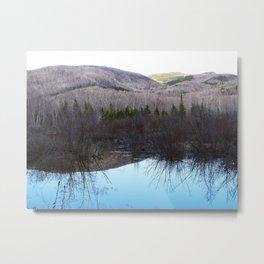Reflecting Nature Metal Print