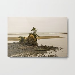 Islas en la Costa de Oregon Metal Print