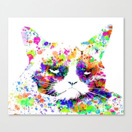 A grumpy pussy cat Canvas Print