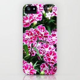 Kamakura Meigetsu-in Flowers iPhone Case