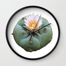 "Lophophora ""Peyote"" Williamsii Wall Clock"