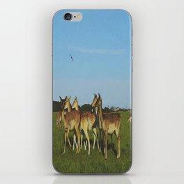 Oh Deer (Artistic/Alternative) iPhone Skin