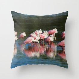 Spoonbill Sanctuary Throw Pillow
