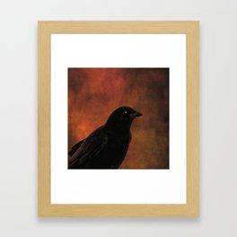 Crow Portrait In Black And Orange Framed Art Print