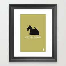 Scottish Terrier Framed Art Print
